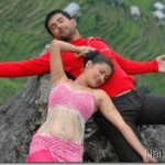 Nepali Movies, Looking Back to 2010 (Part 2)