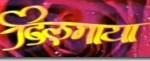 Nepali Movie - Dilmaya