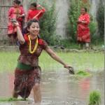 Beauty in paddy field, Nepali actress photo shots in Asar 15