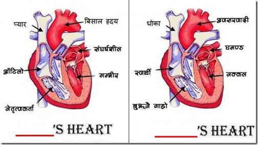 khali_thau_bhara_heart-analyzed