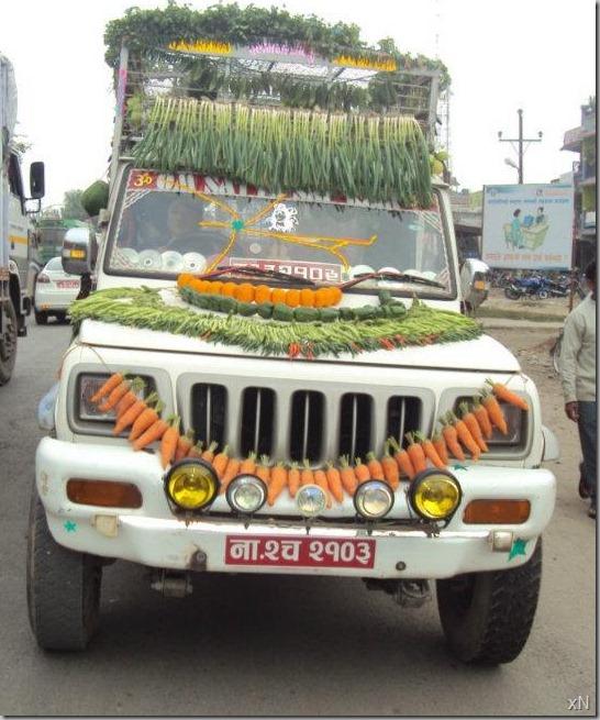 Chitwan_mahotsav_ratna_nagar (24)