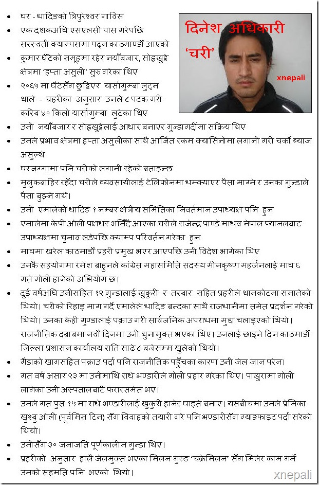 dinesh adhikari chari profile