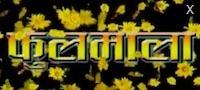 foolmala - nepali movie